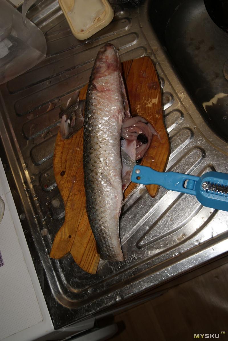 Рыбочистка. Чистим, режем, солим, запекаем.