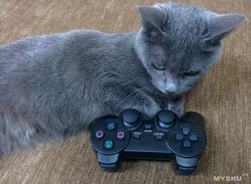 кошка по имени Жуть поддиванная