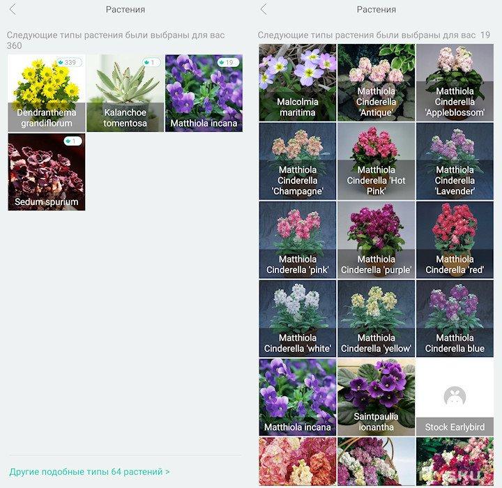Датчик отслеживания условий роста растений VegTrug Flora Monitor (глобальная версия)