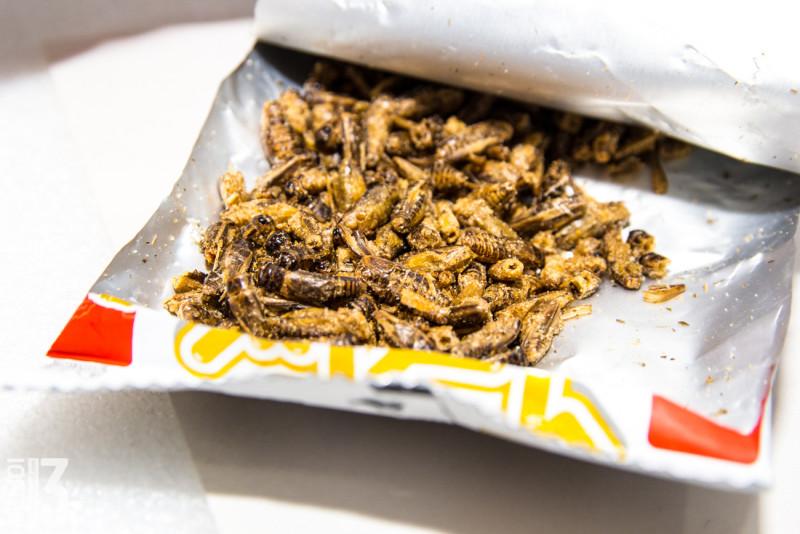 Еда с ebay (выпуск №8/5). Чипсы из жареных сверчков SMALL CRICKETS SNACK (вкусно)