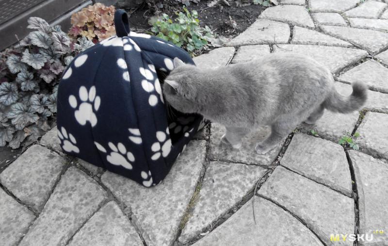 """Новогодние поздравления от моих котиков, или """"новогодний"""" кошкин дом"""