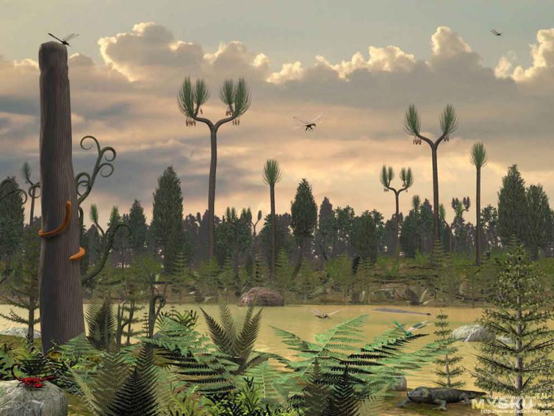 Цветок-динозавр. Плаунок чешуелистый (aka Иерихонская роза)