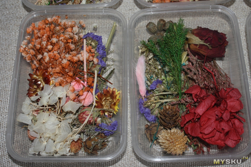 Сухоцветы из Китая для изготовления украшений из эпоксидной смолы и не только