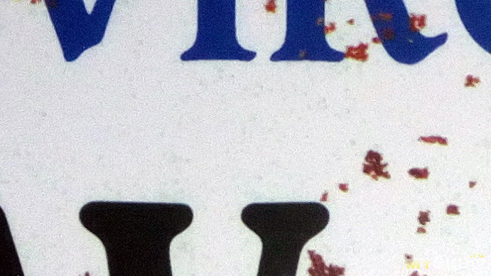license plate paint 100% crop