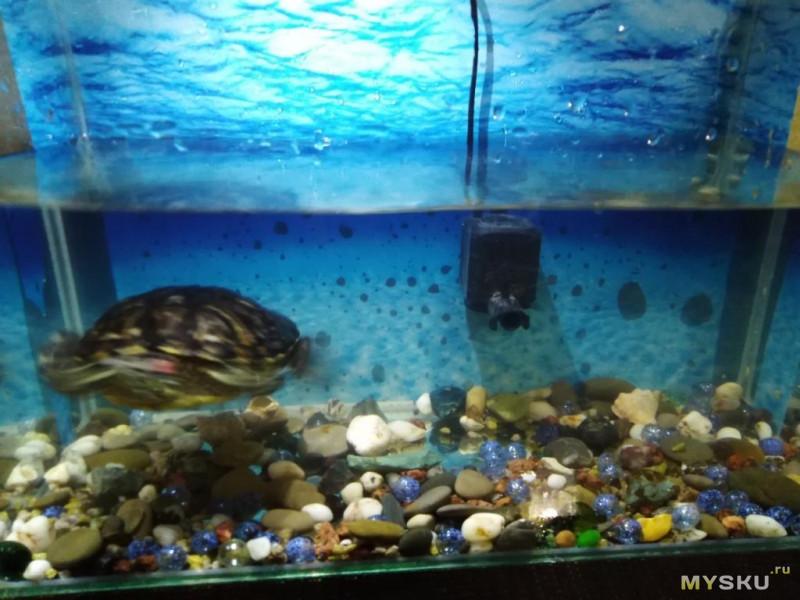 Погружной фильтр для аквариума 8W.